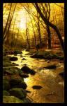 Golden Dream by LG77