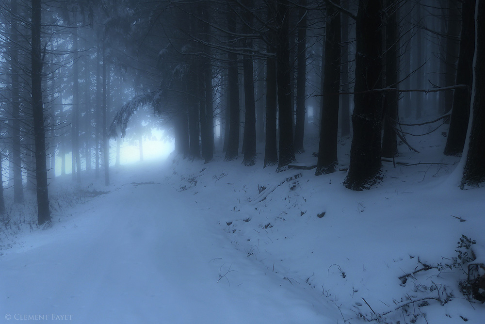 Winter Glow by LG77
