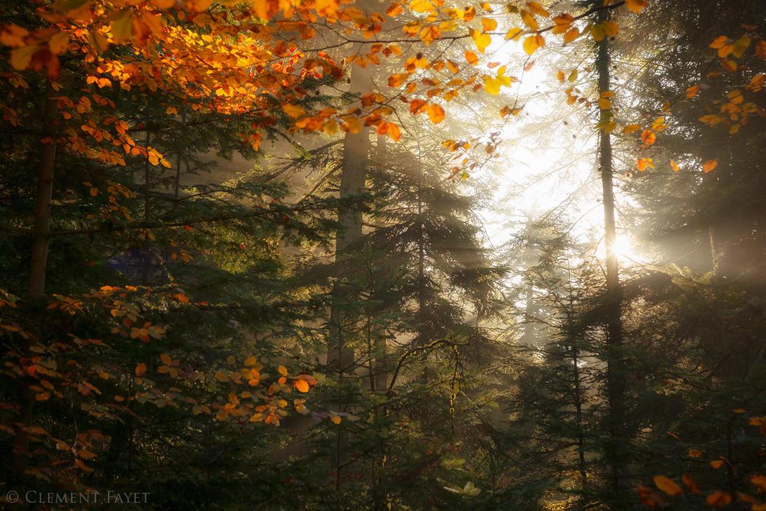 Autumnal Spirit by LG77