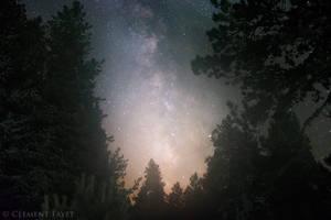 Night Spirit by LG77
