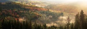 Wonders of Autumn