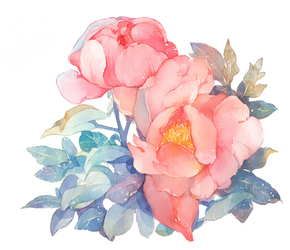 Rose Png by Oceniaa