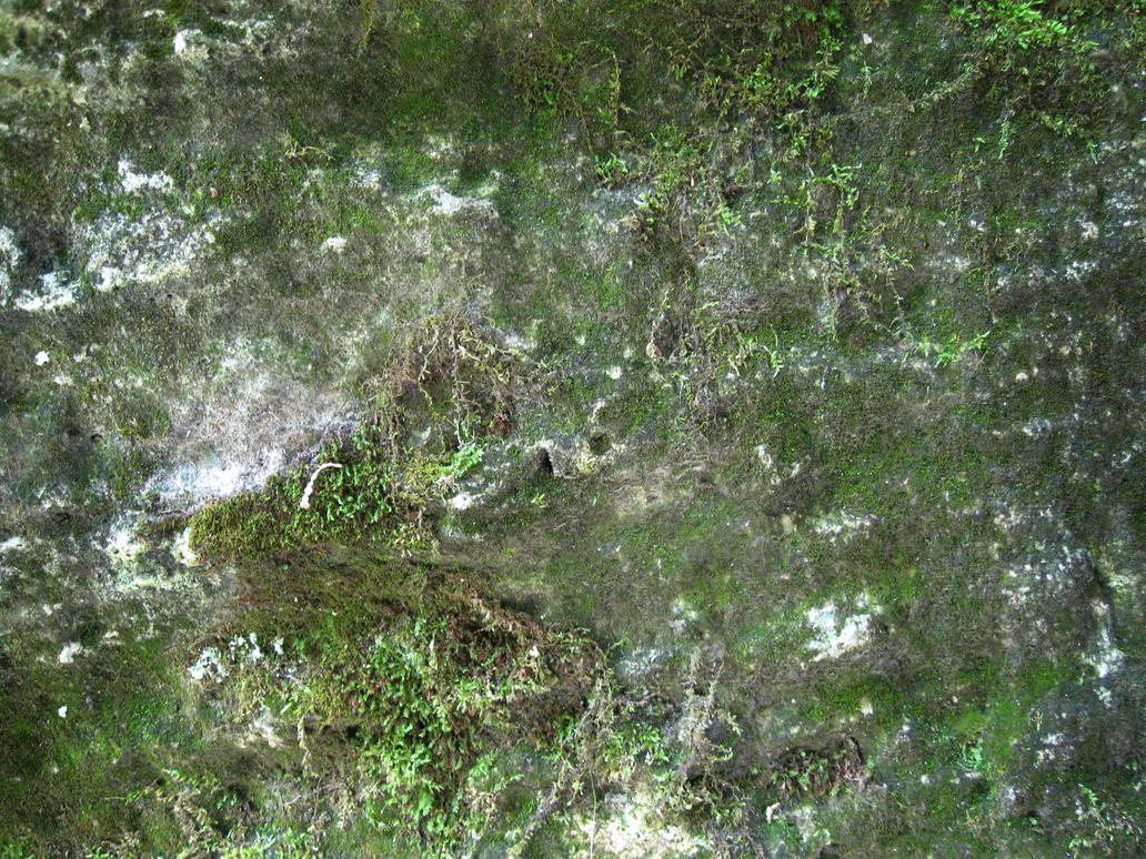 Mossy Rock by KThirteen on DeviantArt Seamless Moss Rock Texture