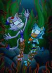 Comm: Cats vs Seaweed