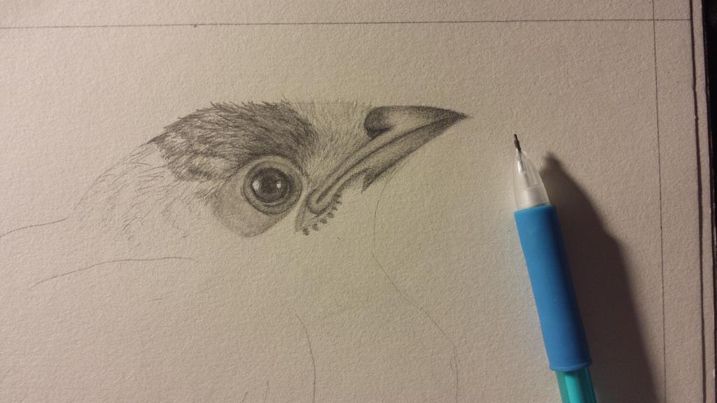 In progress by Animallol