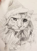 Christmas Kitty by avaunt