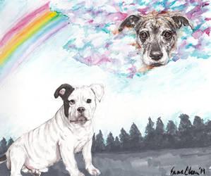 Rainbow Pup by avaunt