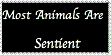 Most Animals Are Sentient by Karasu-no-Yami