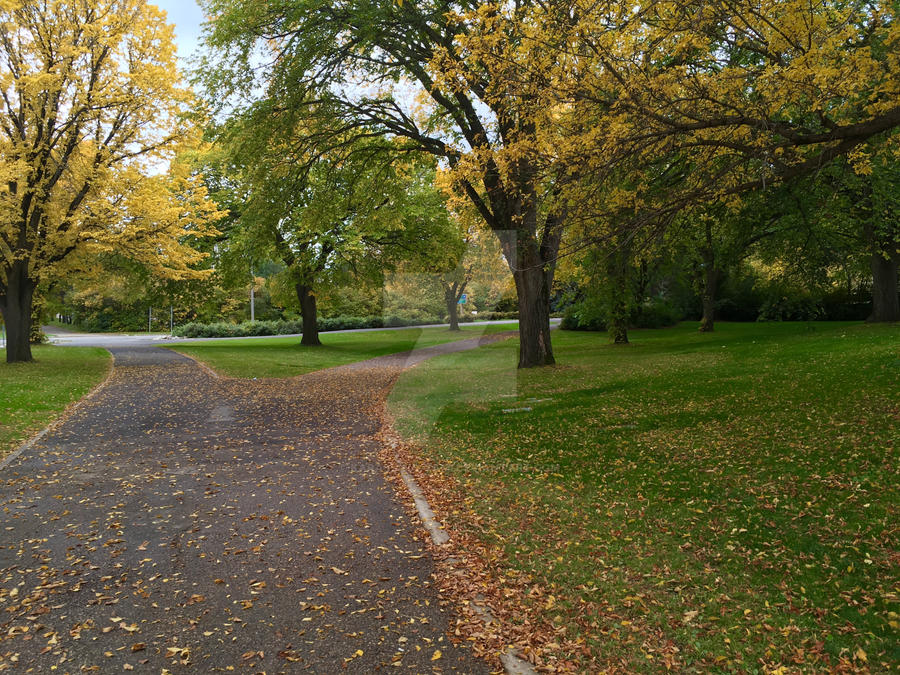 University of Saskatchewan Grounds by Karasu-no-Yami