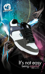 DVS Shoe Sonar 2010