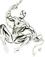 Spider-Man by txboi001
