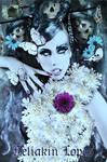 Dark Fairy l Series