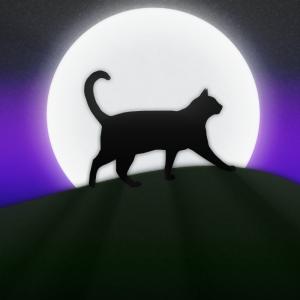 Blackmoonrose13's Profile Picture