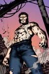 After Battle Wolverine