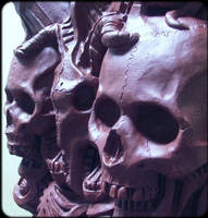 skulls cranium scalp skeleton ribs ribcage bones by JanuszDolinski