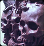 skulls cranium scalp skeleton ribs ribcage bones