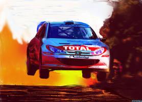 206 WRC art by FCD94