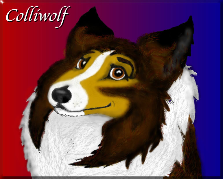 Colliwolf by Colliwolf