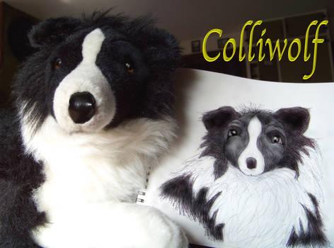 Sadie, My Stuffed Collie