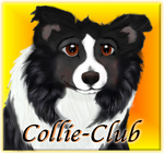 Collie Club ID 10 by Colliwolf