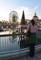 Christmas in DCA by MaddiganRose
