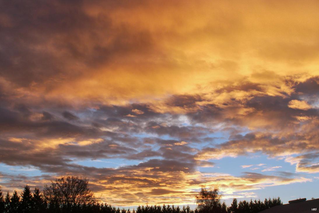 Orange Morning by Vonburgherstein