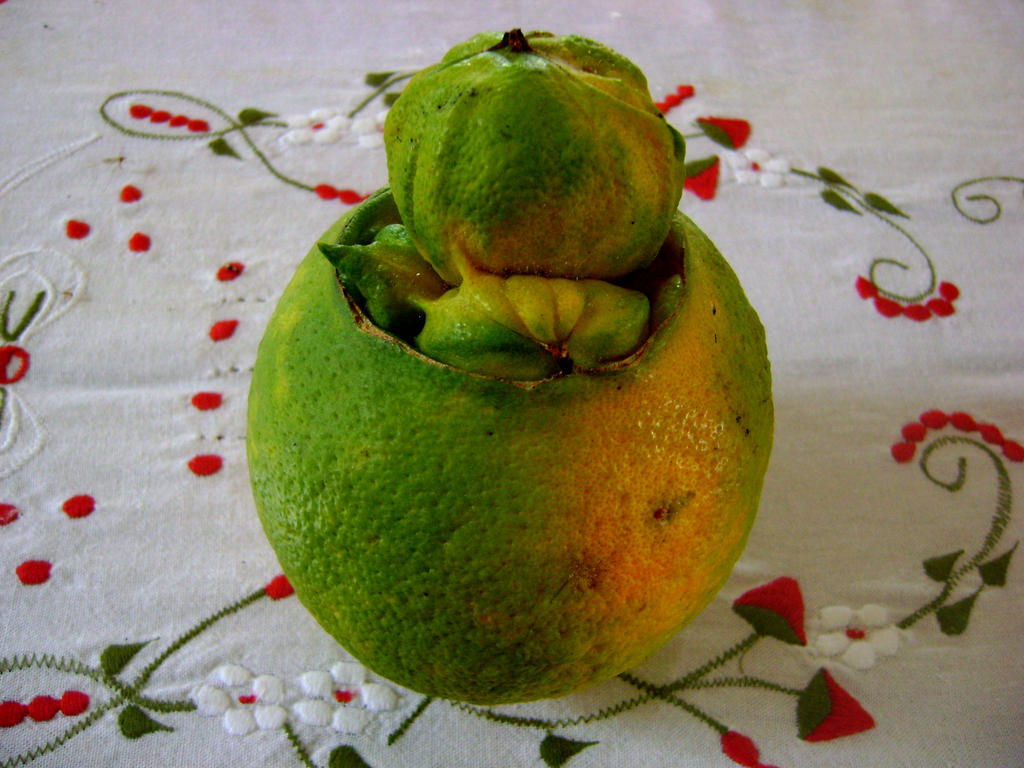 Mutant Orange by 0-sirluke-0