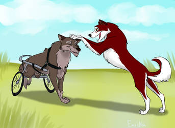 Very Old Balto by MolniaNeh