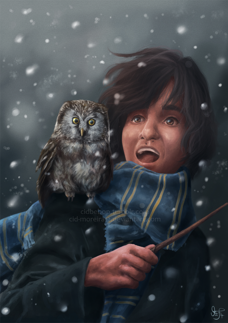 I'm from Ravenclaw by Cid-Moreira12