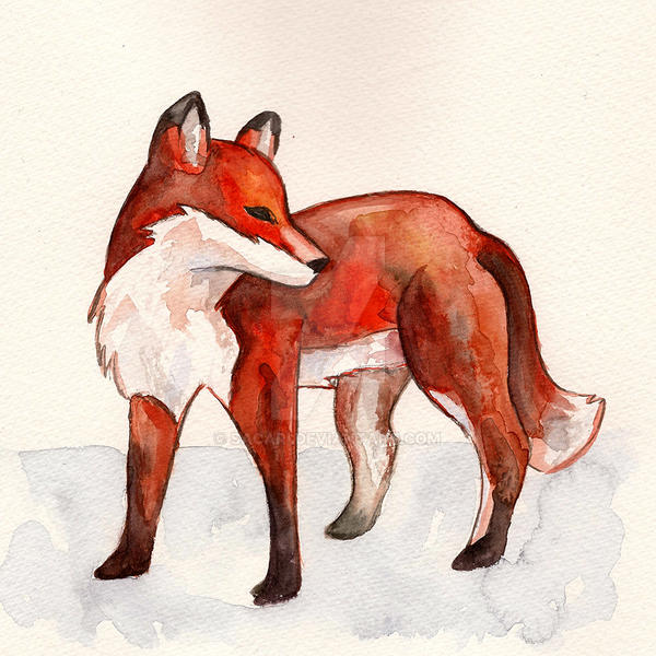Fox by Sacari