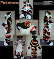 Patches Fursuit by whitewolf
