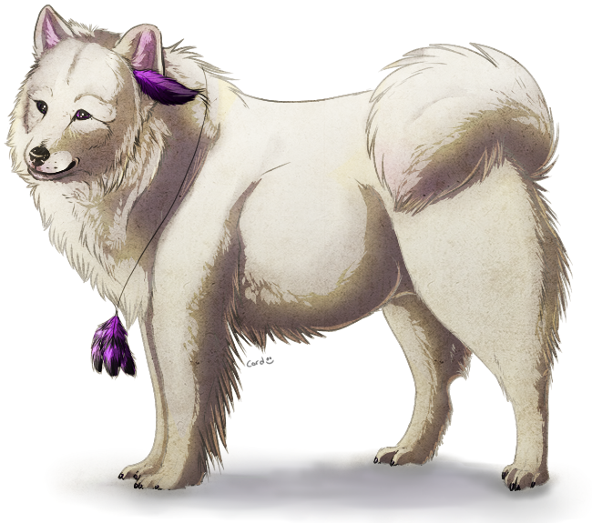 http://orig05.deviantart.net/2e37/f/2012/097/a/b/samoyed_by_cookick4-d4vd2i1.png