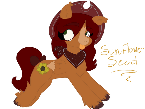 sunflower seed - ponysona
