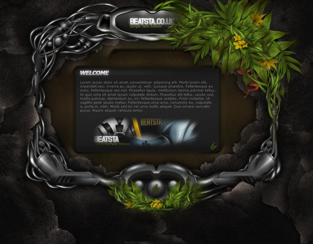 Full web interface tutorial by beatsta