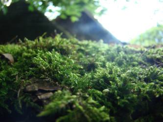 Smithery Roof Moss I by VikingWasDead