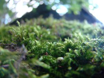 Smithery Roof Moss II by VikingWasDead