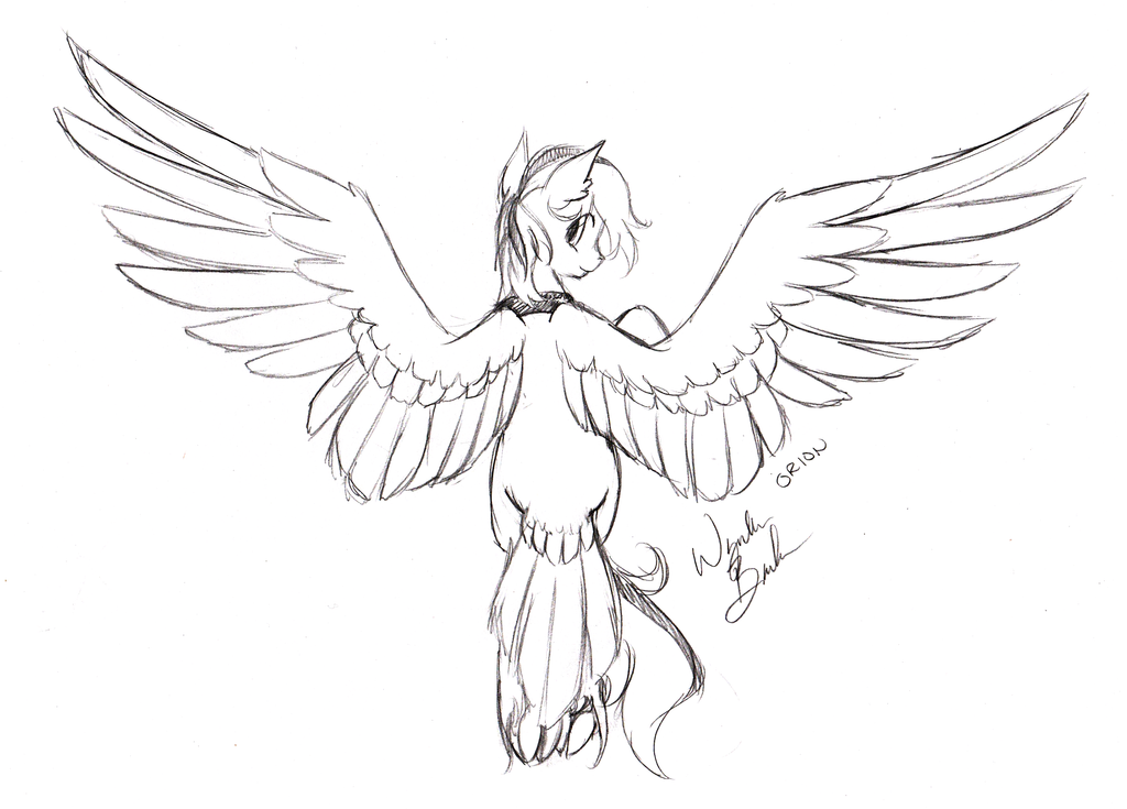 Sketch Request - Orion by FuyusFox