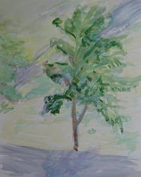Tree by sergey-ptica