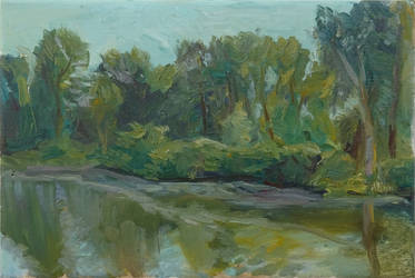 Etude of woods near river