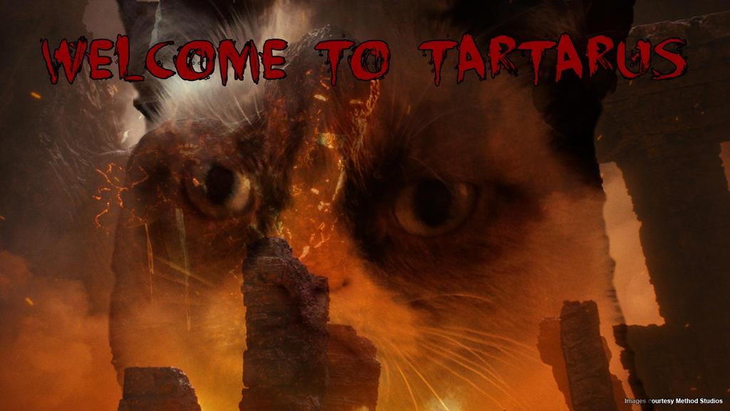 grumpy tartarus cat by agacora on deviantart