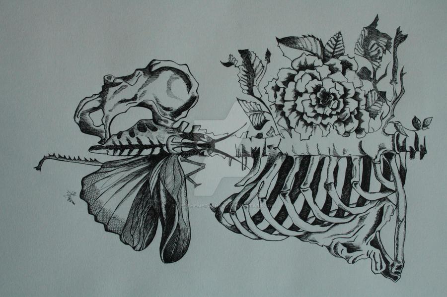 Traditional Flower Line Drawing : Flower skeleton by redthemetalhead on deviantart