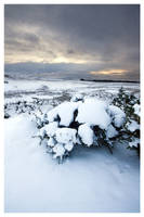 White Pentlands by FlippinPhil