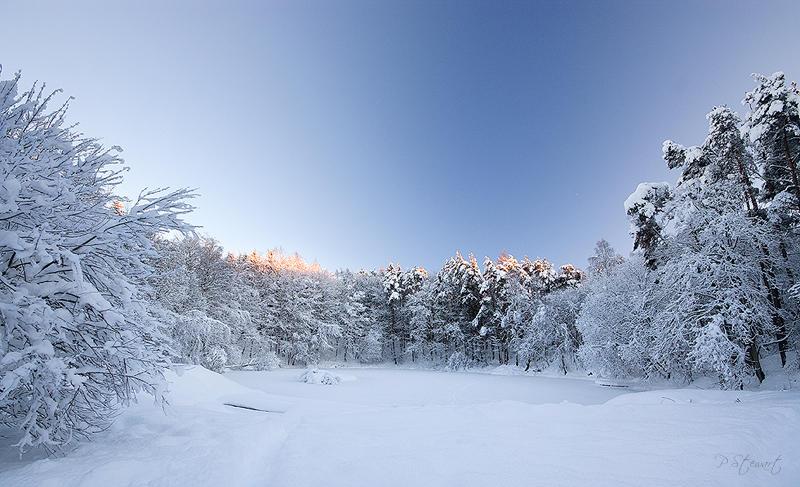 Frozen Skivo by FlippinPhil