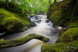 Rumbling Gorge by FlippinPhil