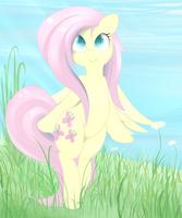 Shy Spring by PosionJoke