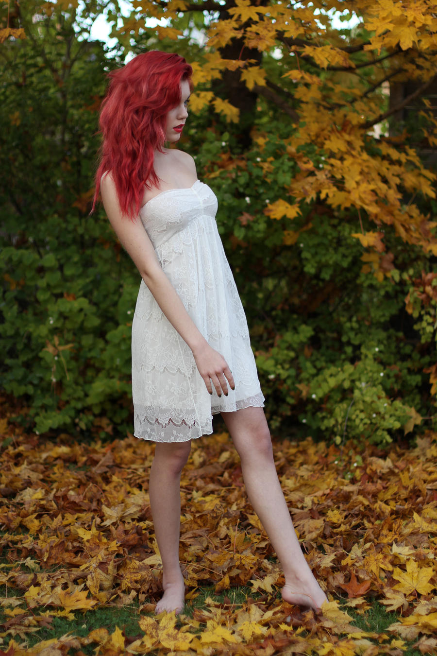 Autumn 9 - stock by Mirish
