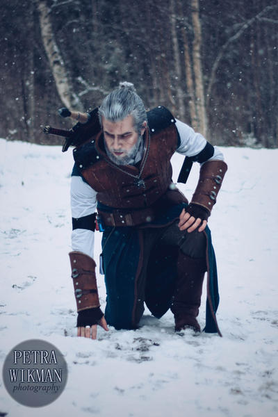 The Witcher - Following Tracks by Mirish