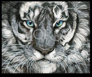 WHITE TIGER by MNIMOREA