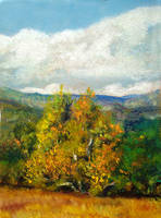 Sycamore  Valley color study by Ravenhaven