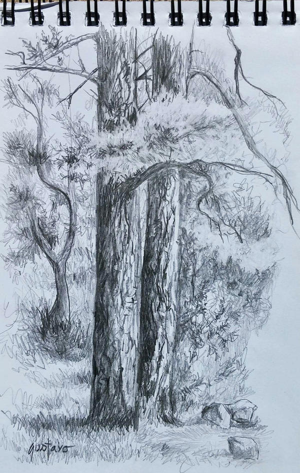 Plein Air Sketch by Ravenhaven